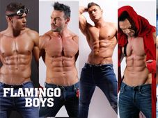 LADIES-ONLY: FLAMINGO BOYS MALE STRIPPERS, DORIAN POPA