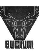 Concert Bucium