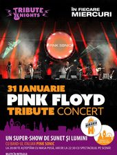 Pink Floyd [Concert] / All the hits LIVE w/ Pink Sonic (IT)