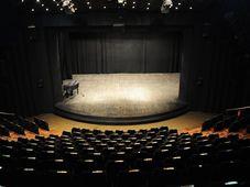 Teatrul Coquette : Noptile Barbare