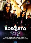 Concert Bosquito