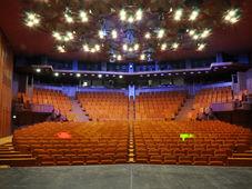 """Teatrul Rosu """"FIRST DATE"""""""