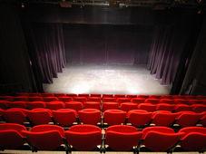"""Teatrul Rosu: """"Pușlamaua"""""""