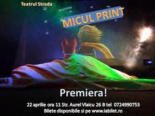 Micul Print