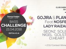 Bass Challenge 3