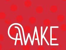 Awake Festival 2018 (PASS)