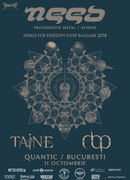 Concert Need / Taine / MBP live in Quantic