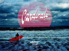 Cardinal / Expirat / 10.09