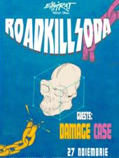 RoadkillSoda / Expirat / 27.11
