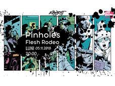 Pinholes / Flesh Rodeo / Expirat / 05.11