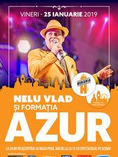Concert Azur și Nelu Vlad la Berăria H