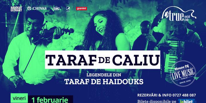 Concert Taraf de Caliu