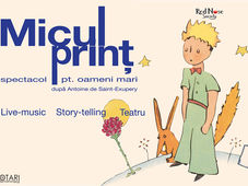 Spectacol de teatru Micul Print - Bacau