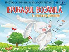 Iepurasul Bocanila