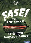 Festivalul Ceau, Cinema! ediția a 6-a