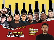 În Comă Alcomică - Stand Up Comedy - umor treaz vs umor beat