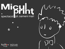 MICUL PRINȚ- spectacol pt oameni mari (Cluj)