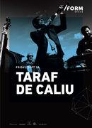 Taraf de Caliu at /FORM SPACE