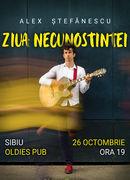 Alex Stefanescu - Ziua Necunostineti - Live La Sibiu