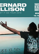Bernard Allison - Let It Go Tour @ Transilvania Blues Nights