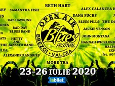 Open Air Blues Festival Brezoi - Vâlcea