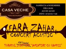 Roman: Fara Zahar - concert acustic