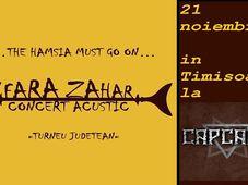 Fara Zahar prezinta hamsia //Capcana // Timisoara