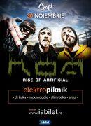Concert R.O.A. - Elektropiknik