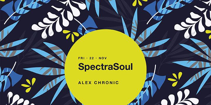 SpectraSoul at Midi