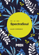 SpectraSoul at Midi