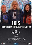 Concert IRIS Cristi Minculescu, Valter si Boro