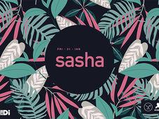 Sasha at Midi