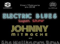 Concert Johnny Mitrache & The Wellknown Boys