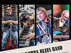 Sibiu: Concert Marius Dobra Blues