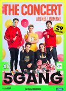 5GANG / The Concert / 29 august - Bilet de o zi