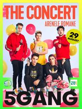 5GANG / The Concert / 29 august - Bilet de o zi