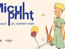 Petrosani: Micul Print - spectacol pentru oameni mari
