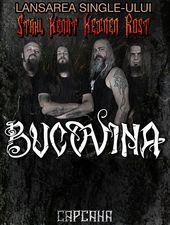 Timișoara: Concert Bucovina