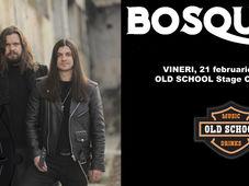 Botoșani: Concert Bosquito