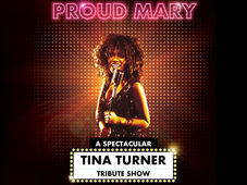 Botosani: Proud Mary – A Spectacular Tina Turner Tribute Show