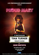 Botosani: Proud Mary – A Spectacular Tina Turner Tribute Show