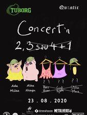 Concert în  2 -  Ada Milea si Alex Neagu