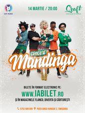 Timisoara: Concert Mandinga