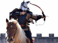 O zi magica pentru copilul tau: un spectacol de poveste cu cavaleri si dragoni, tir cu arcul si echitatie