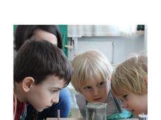 Curs - I Will Know pentru copii (3-6 ani)