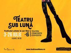 Festivalul Teatru Sub Luna by InDArt