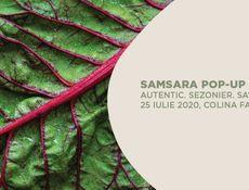 Samsara Pop-Up Stories