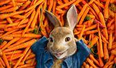 Orange Pop-Up Cinema: Peter Rabbit