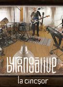 """Overground Showroom: byron – """"Nouă"""" live la Cincșor"""