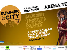 SUMMER IN THE CITY – Concert Julie Mayaya , Tina Turner tribute show